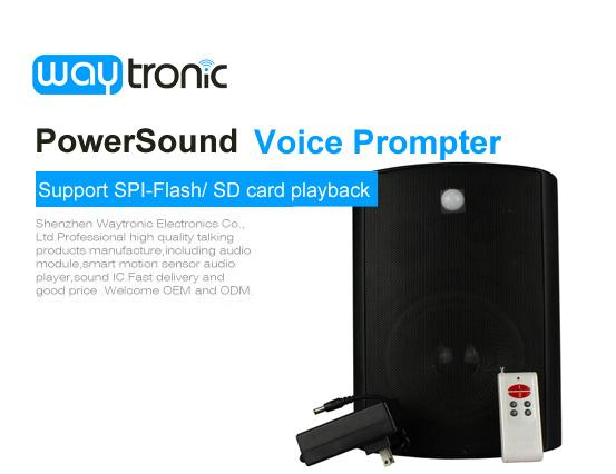 PowerSound Hifi 40W Audio Amplifier PIR Motion Activated