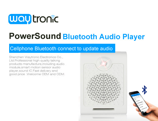 Powersound Voice Prompter, PowerSound Motion Sensor MP3